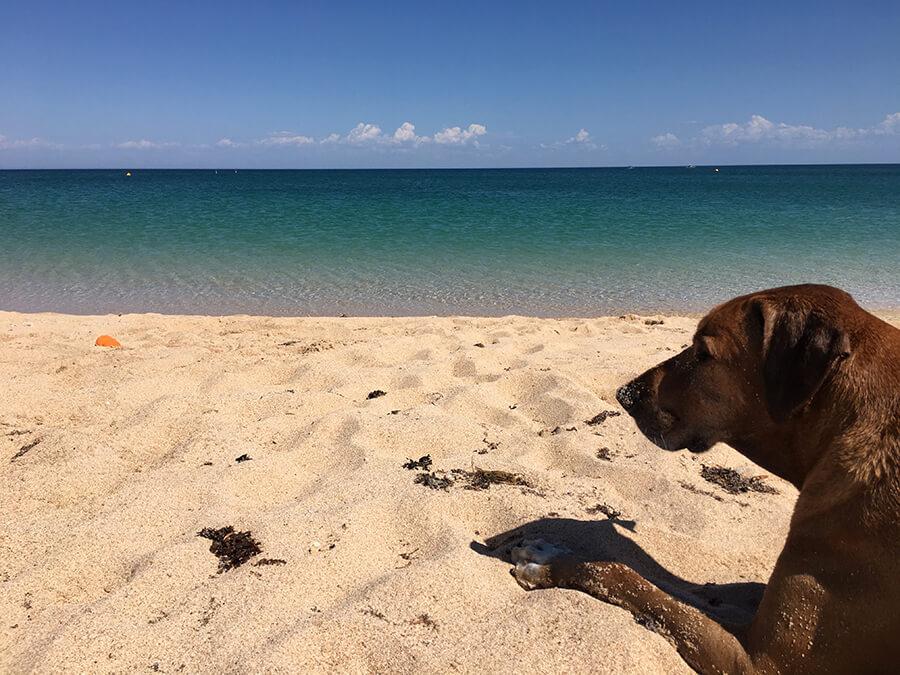 3 days Holiday Ningaloo Bundegi Beach