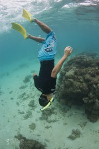 Snorkeling the Coral Ningaloo Reef